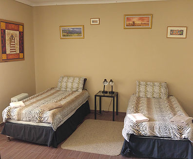 room4-twin-en-suite2